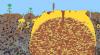1344-desert.png