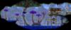06.8 Mushroom Biome v2 FULL-RAW.png
