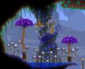 08.013 MushroomPillarRAW.png