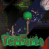 Terraria Freak