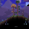 I enjoy terraria