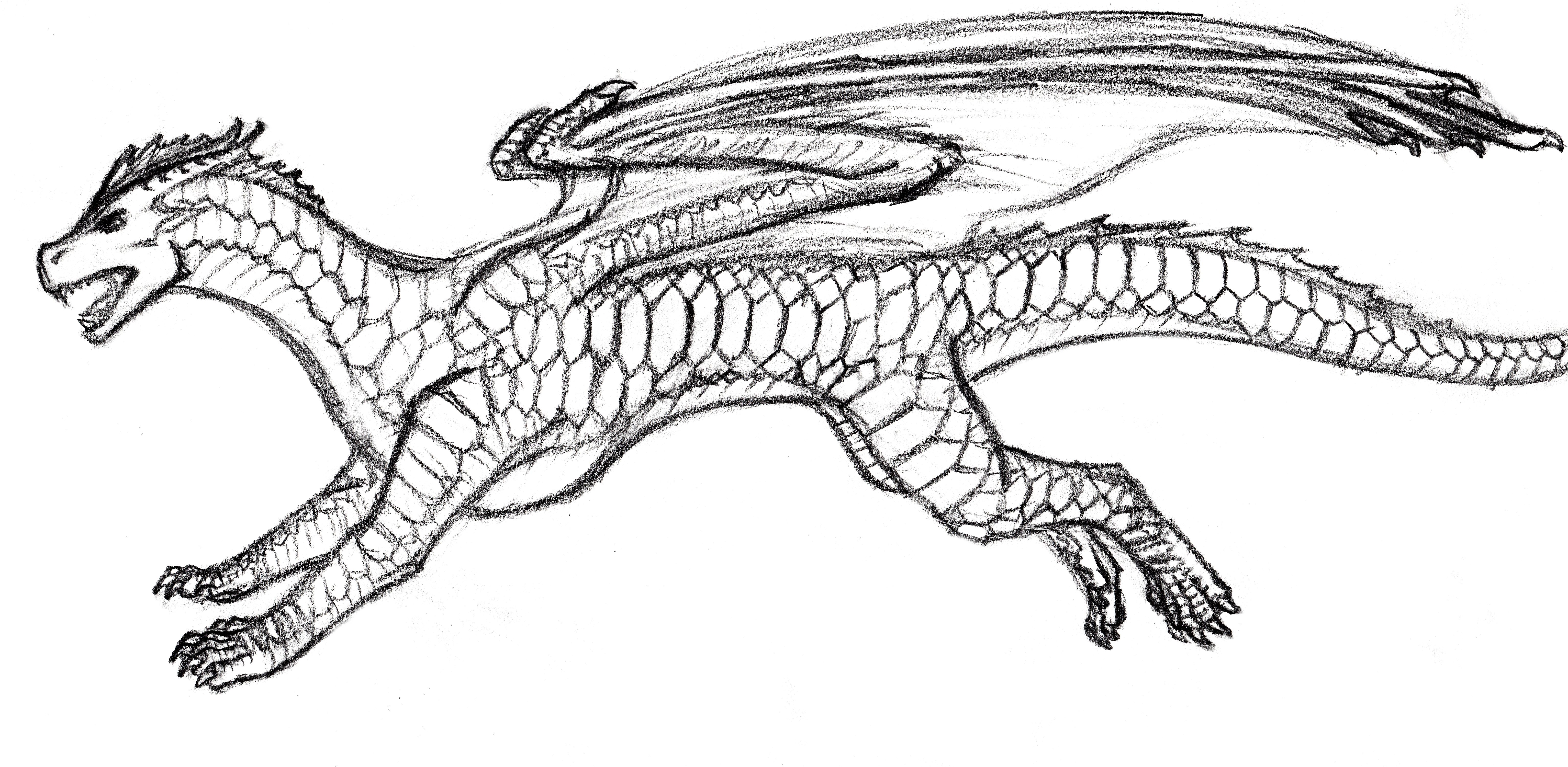 DragonRunning(Sketch).jpg