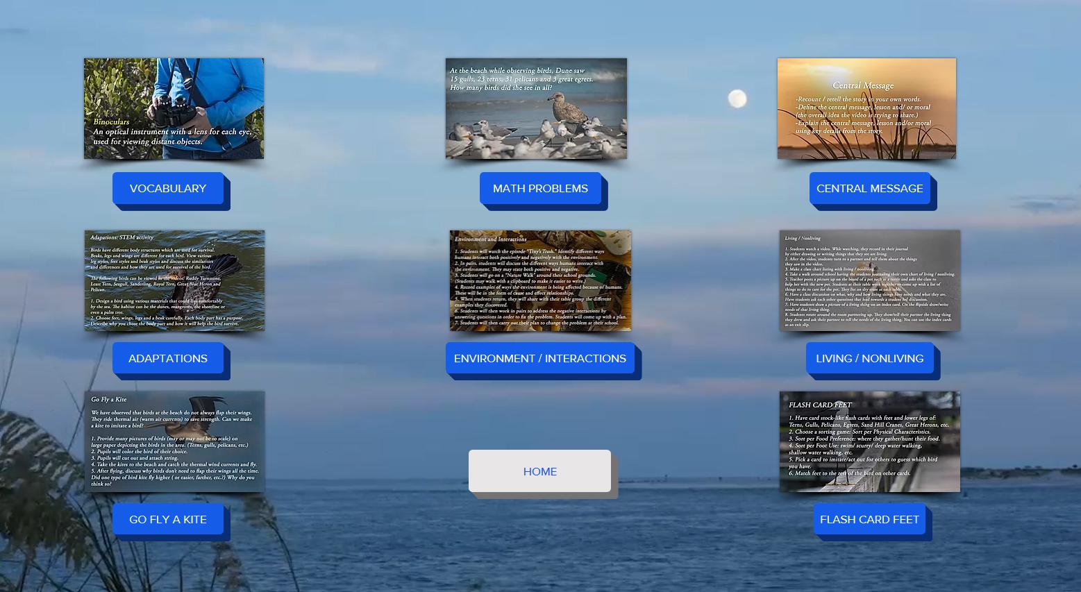Dune's Island_Website Curriculum Image.jpg