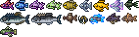 fishes 2.png