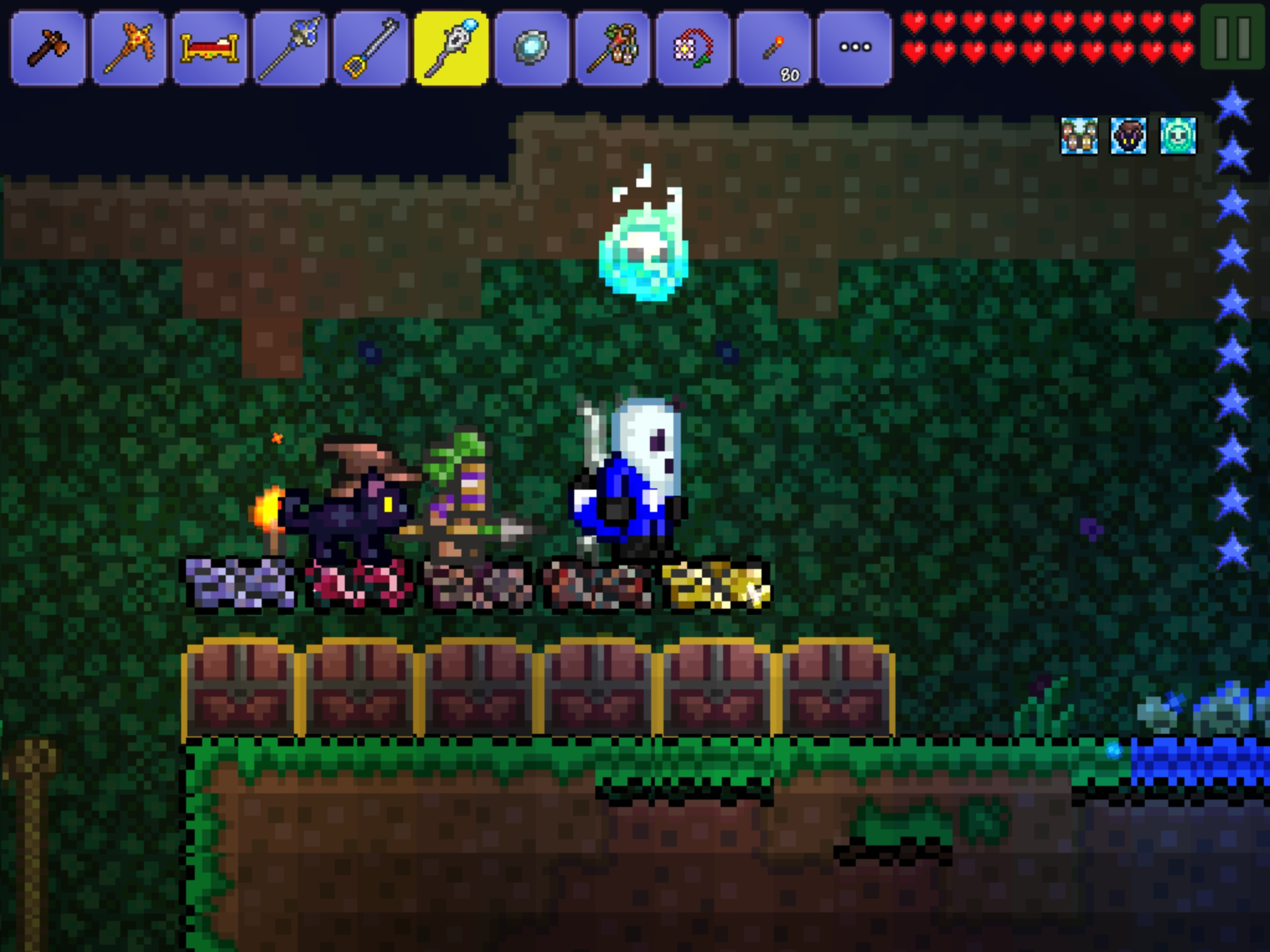 What Do You Have In Your Social Slots Page 4 Terraria