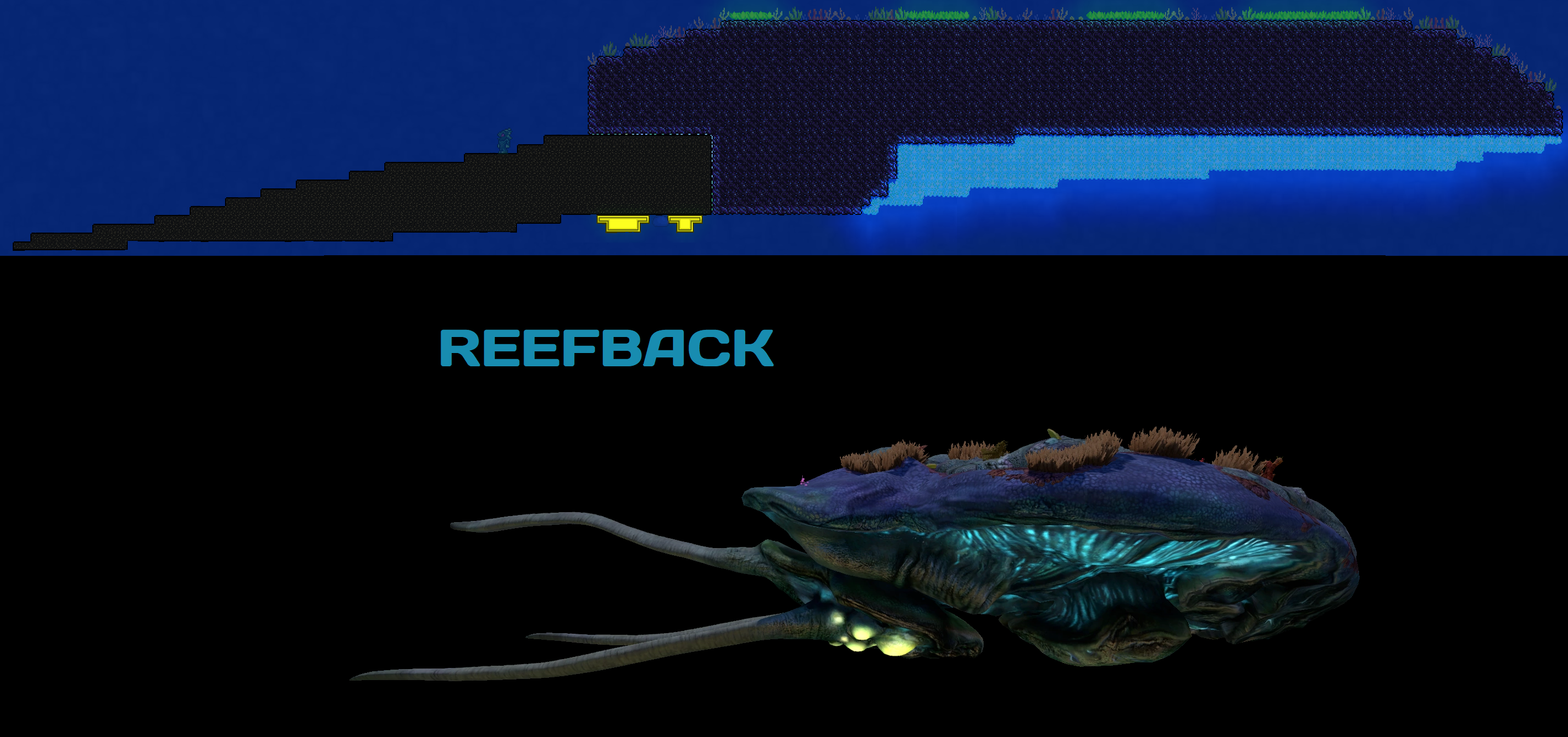 Reefback.png